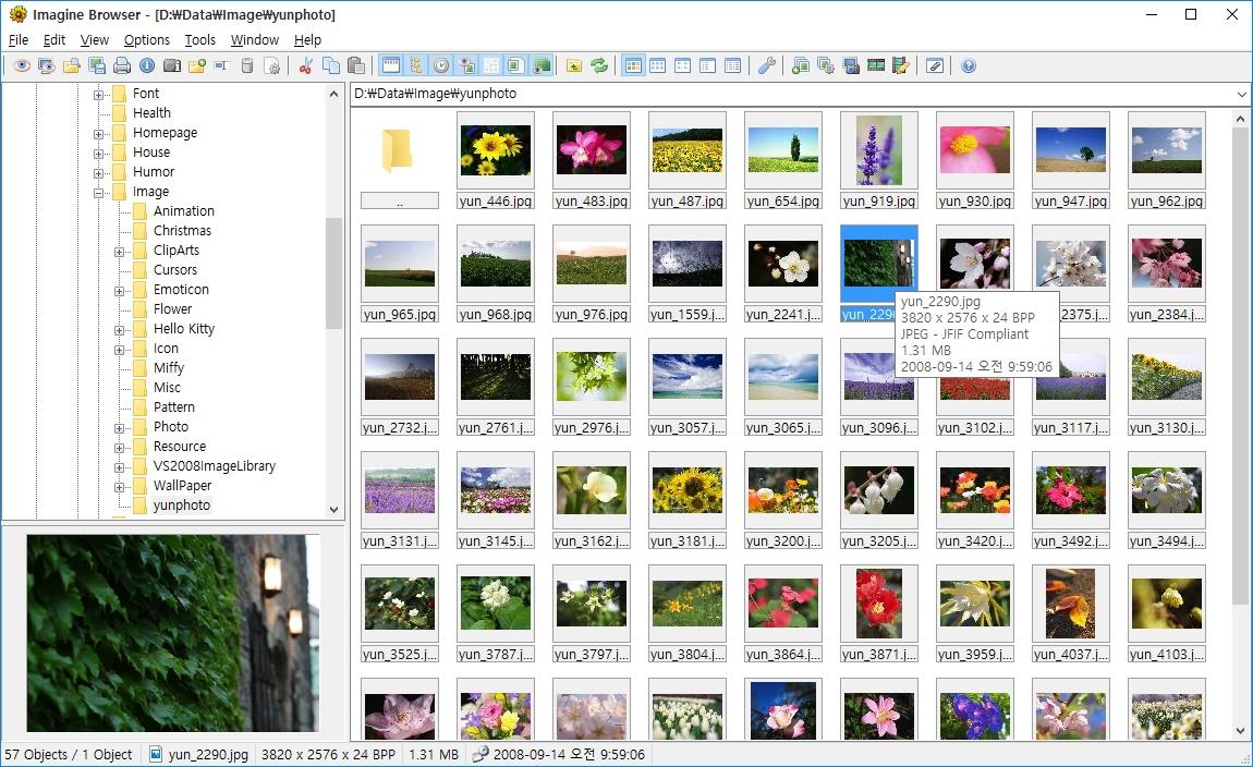 windows photo viewer download windows 7 32 bit free
